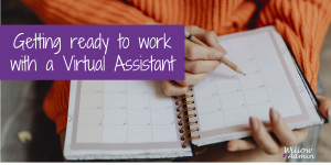 Getting-ready-to-work-with-a-Virtual-Assistant